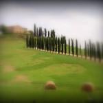 tuscany-farmhouses